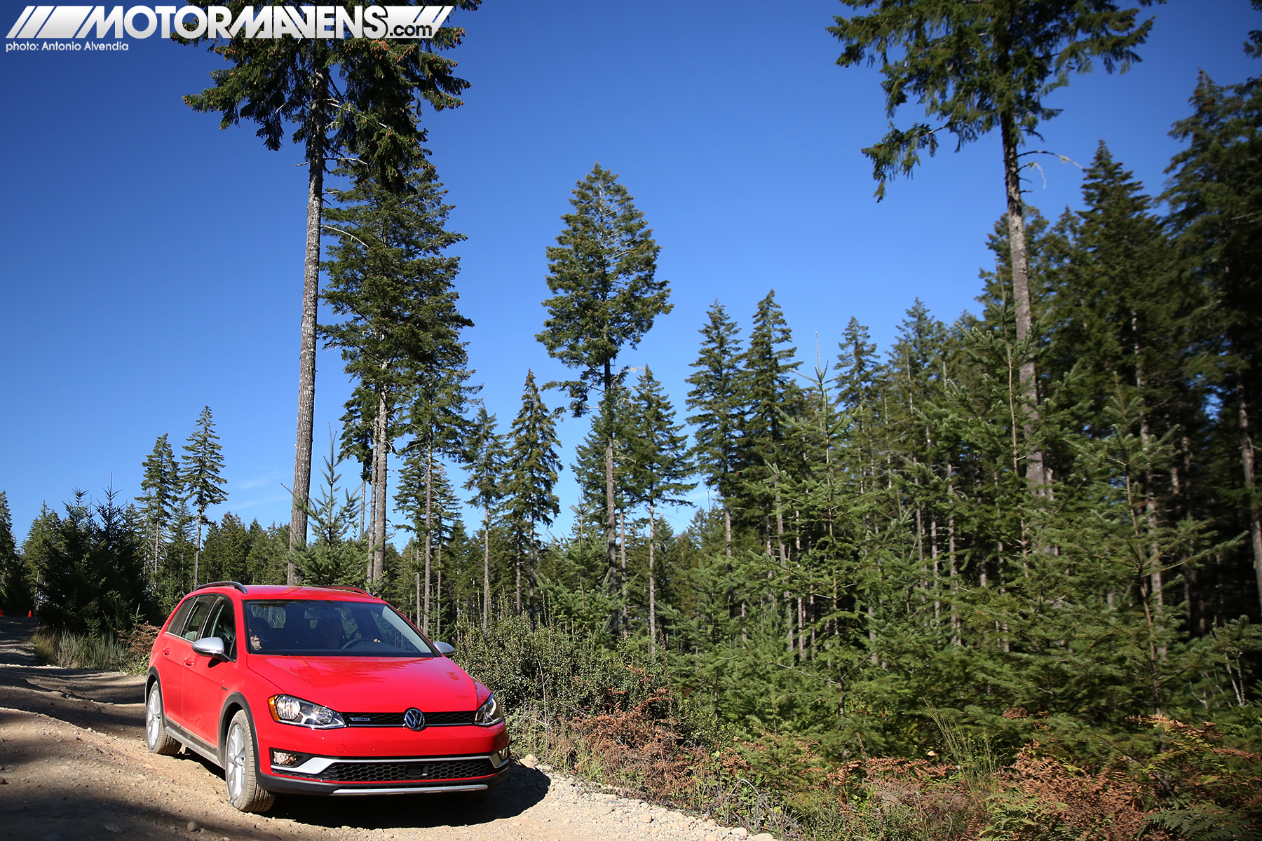 VW Golf. Golf Alltrack, Volkswagen, Sportwagen, VW, Tahuya State Forest, Elfendahl Trail, offroad